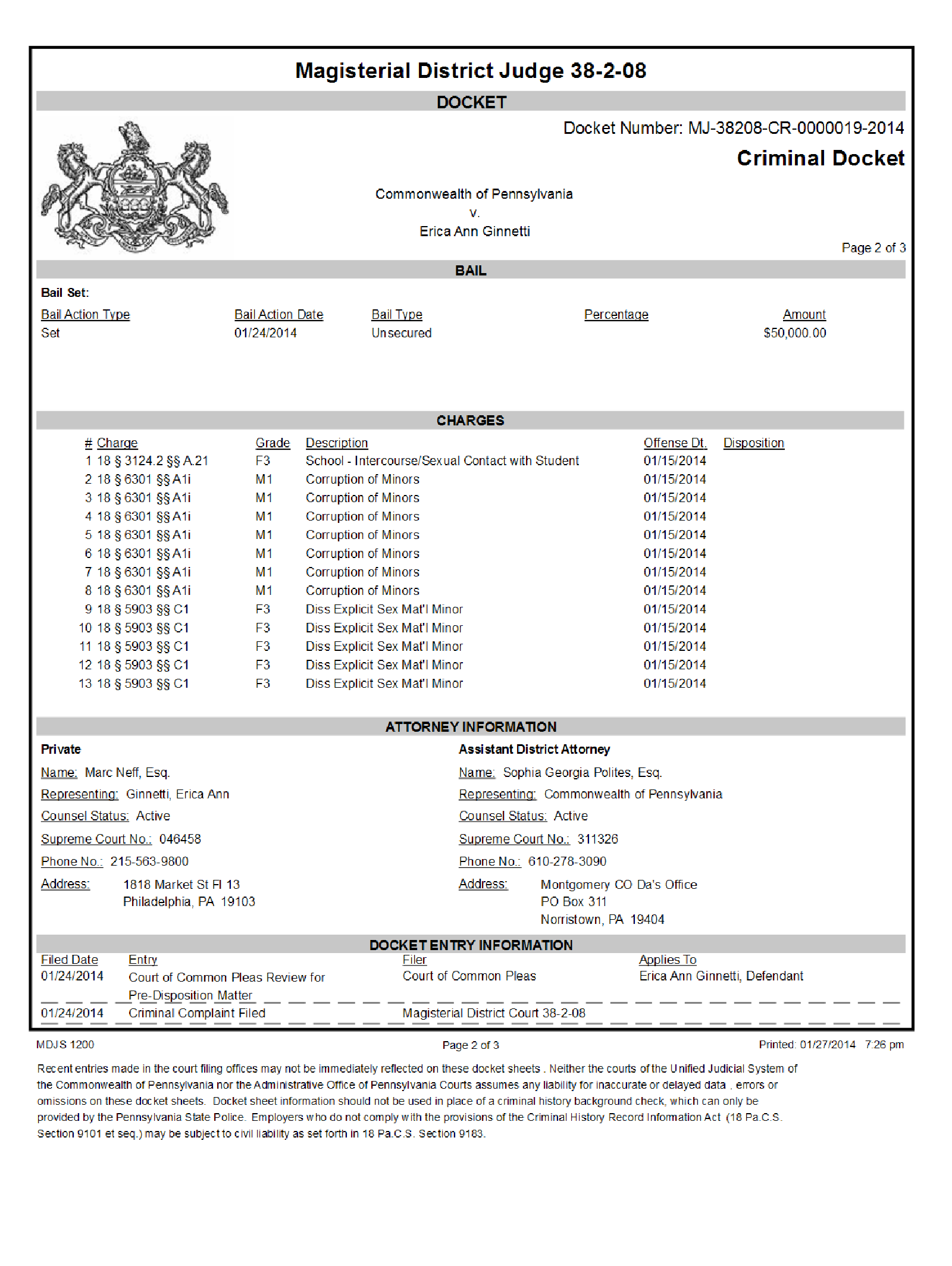 Copy of Ginnetti Erica Ann Criminal Docket2.png