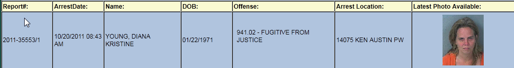 young diana kristine arrest report.png